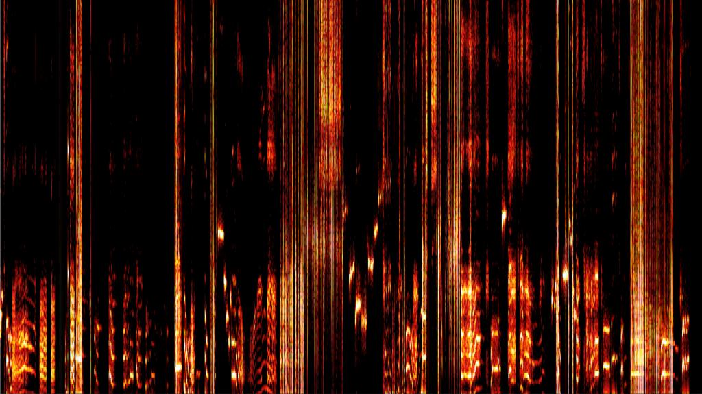 Feuer Erde